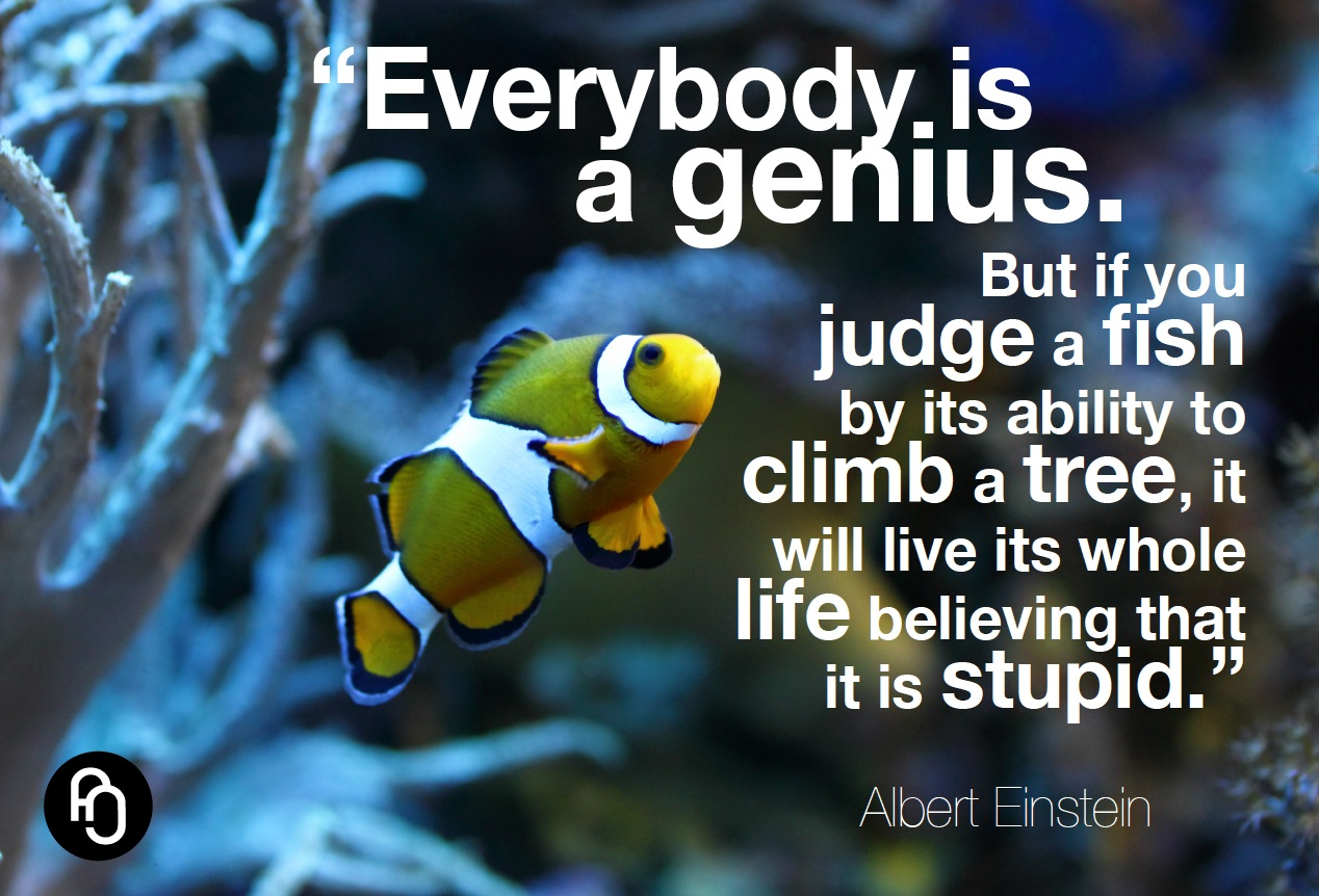 focusNjoy #94: Everybody is a genius